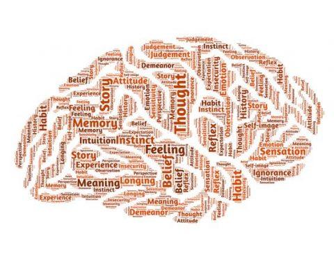 Pinceladas científicas sobre el TDAH