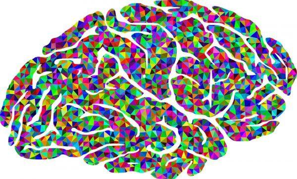 cerebro-mymind